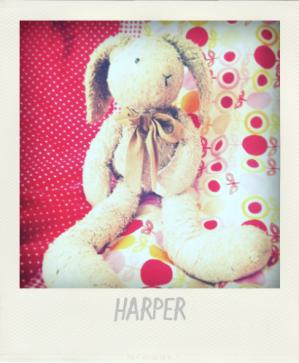 Harper & Cie